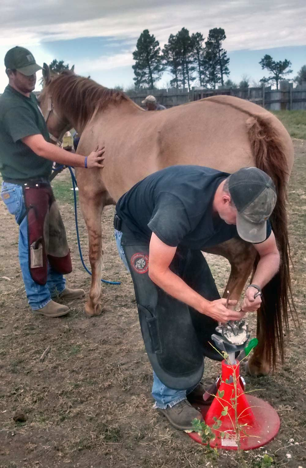 horseshoeing-nebraska-farrier-school